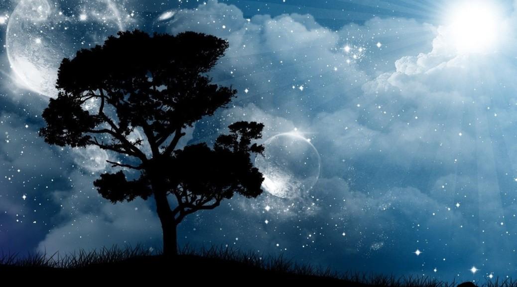 soleil,-silhouette-de-larbre,-ciel-de-la-nuit-159700